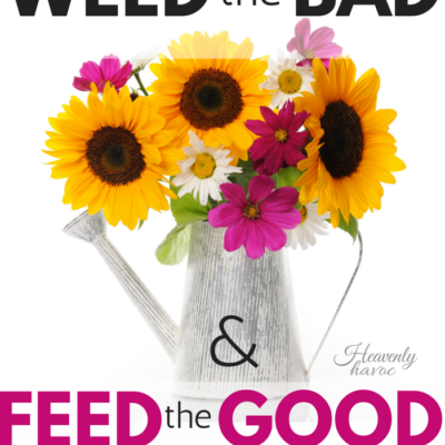When the bad habits are getting out of control, it's time for the Weed and Feed!