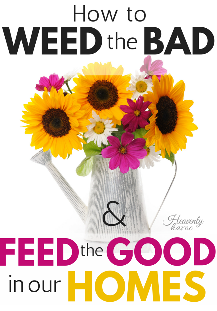 Feed the Plants, not the Weeds