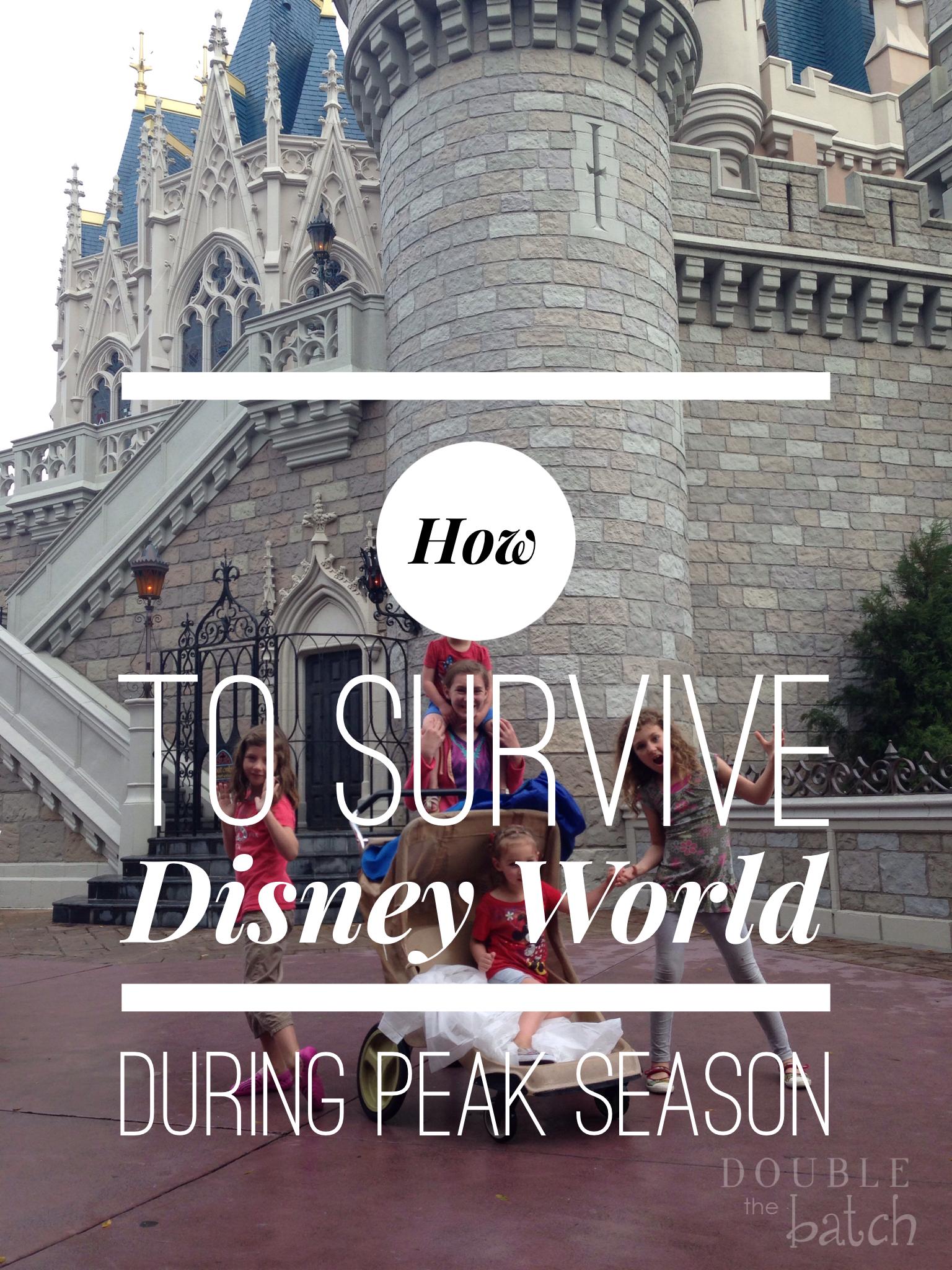 How to Survive Disney World During the Peak Season