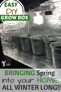 DIY Grow Box - Bringing Spring into your home ALL Winter Long