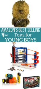 Amazon's Best Selling Toys for Young Boys