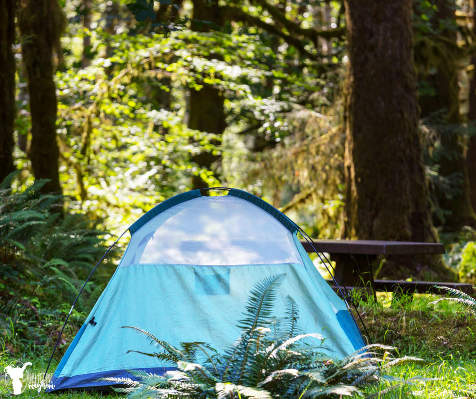 Camping can be a fantastic cheap family activity that will create family memories!!