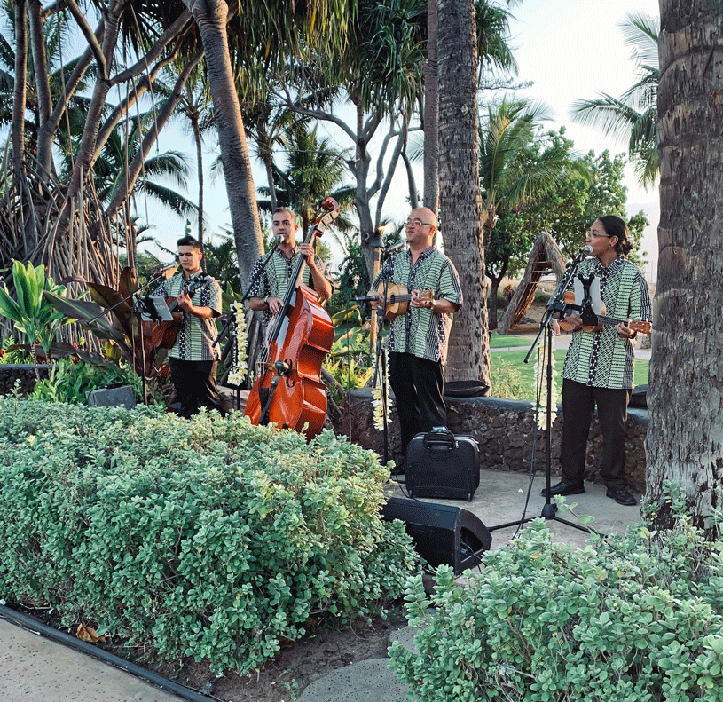 The live band at the Luau