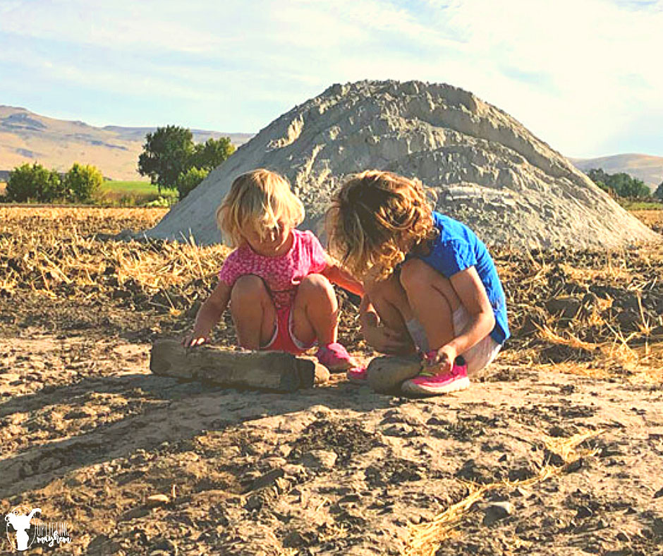 Outdoor play has been proven time and time again to be so incredibly beneficial for all your kids! You don't need an expensive playground...all you need is found in this article for hours of fun for your kids to play outside!!
